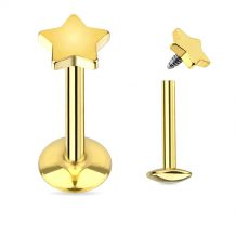 Titaneloksert Labret med Stjerne - Gullfarget